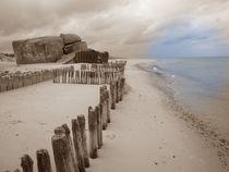 Küste von Ute Bauduin