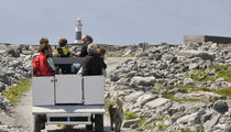 Local Taxi on The Aran Islands by Dave  Byrne
