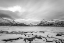 Monochrome Lofoten by Nick Wrobel
