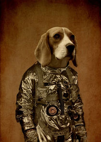 'Beagle' by durro