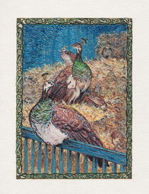 Peahens300dpi18by24cm