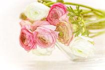 Frühlingsblumen by Karin Dietzel