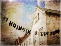 Kunst über der Straße - Curious Practice von freedom-of-art