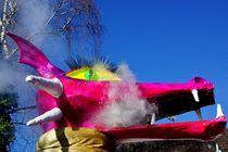 Pink im Karneval von leddermann