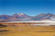 Atacama Hills by David Hare