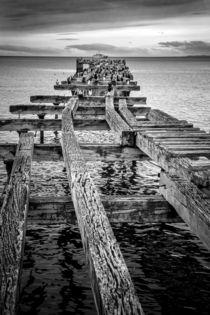 Derelict Pier von David Hare