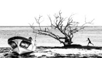 The tree of Majahual von Baptiste Riethmann