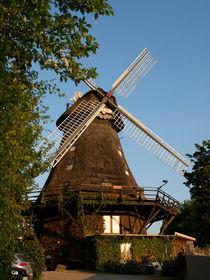 Die Mühle by Thorben Junge