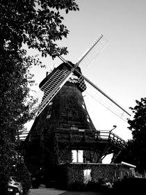 Die Mühle von Thorben Junge