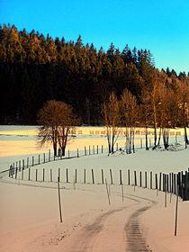 Wanderung an einem Winternachmittag | Landschaftsfotografie von Patrick Jobst