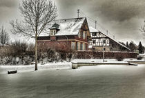 the house in the park von Michael Naegele