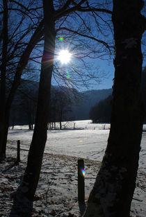 Winterstimmung von Michael Schmalz