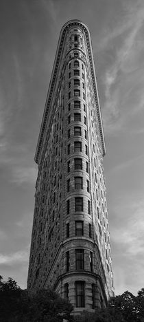 Flat Iron Building NYC by Cesar Palomino