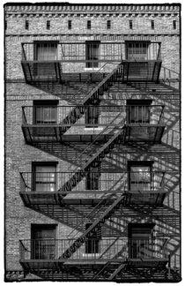 Harlem von Cesar Palomino