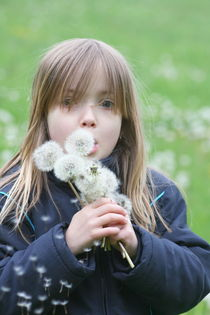 Girl with dandelion by hadot