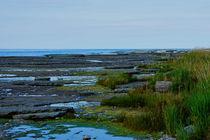 Ölands norra Kust von Thomas Matzl