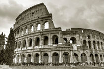 Roma-0797