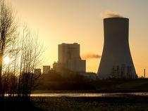 Kraftwerk Walsum, Duisburg von Daniel Heine