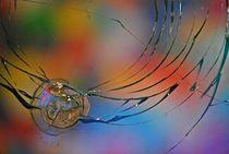 'flower shots... 3' by loewenherz-artwork
