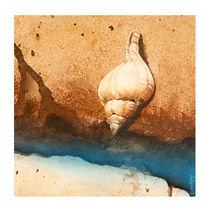 Muschel im Sand by Beate v.d.Sand