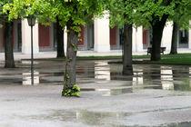 Rain 0999 von Mario Fichtner