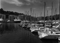 Yachts in the Marina by Evgeny Govorov