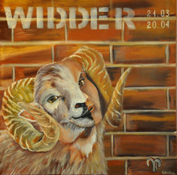 Widder-a2