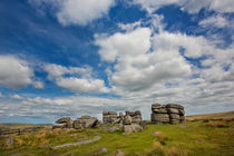 Dartmoor Tor by David Hare