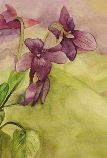 Lilies by Caroline Allen