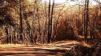 Croatian autumn von san-rean