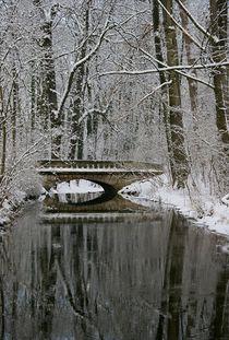 Brücke im Winterwald von Bruno Schmidiger
