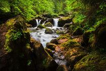 Alpine Falls von David Hare
