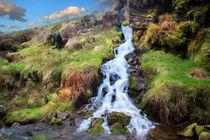Peak District Falls by David Hare