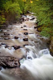 Welsh Rapids von David Hare