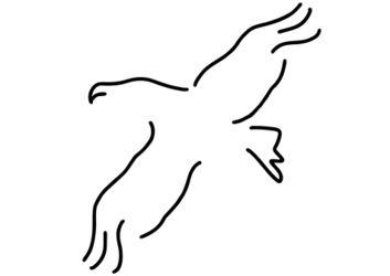 Adler-geier-raubvogel-greifvogel