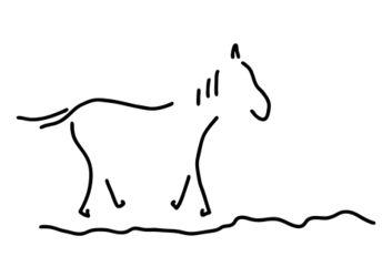 Pferd-wildpferd-reiten