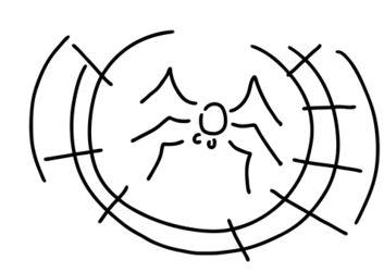 Spinne-spinnennetz-faden
