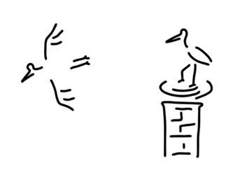 Storch-nest-schornstein-stoerche