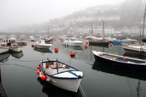 Misty Harbour by Liz Bugg