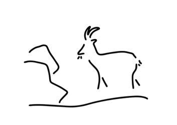 Ziege-steinbock