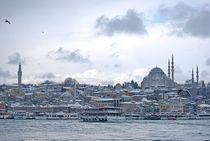 skyline Istanbul... 3 by loewenherz-artwork