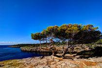 Mallorca - Natural by Jürgen Seibertz