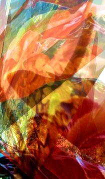 Calla Fantasy by Juergen Seidt