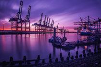 Waltershofer Hafen by Felix Neumann