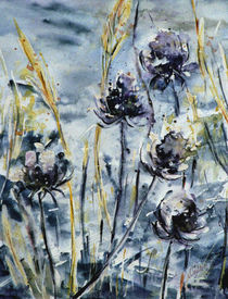 Blaue Distel im Schnee - Blue thistle in snow by Chris Berger