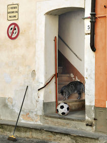 Ballspielen verboten von Juliane Tenner-Hebel