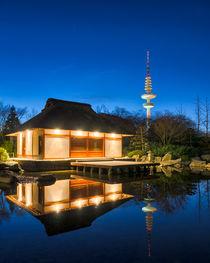 Hamburger Teehaus mit Fernsehturm von Steffen Klemz