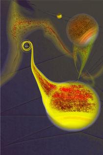 Not a Black Hole von Johann Wendelin Heiß
