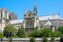 Notre Dame XI von Carlos Segui