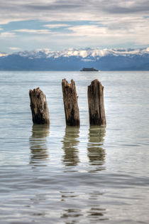 Bodensee-0644